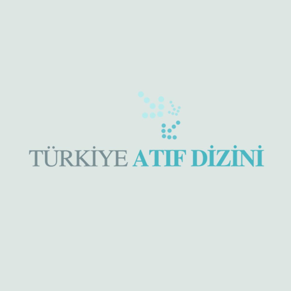 TÜRKİYE ATIF DİZİNİ